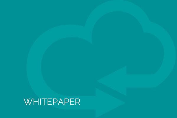 Ecommerce Whitepaper